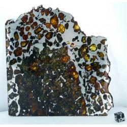 Esquel Meteorite