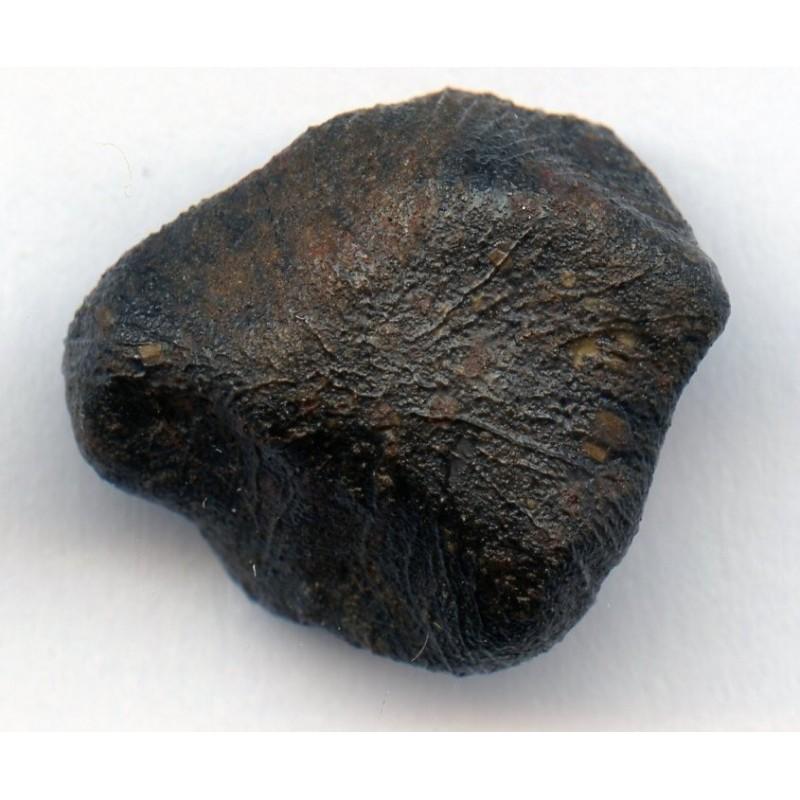 Camel Donga Meteorite