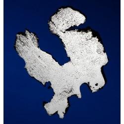 Lovina Meteorite