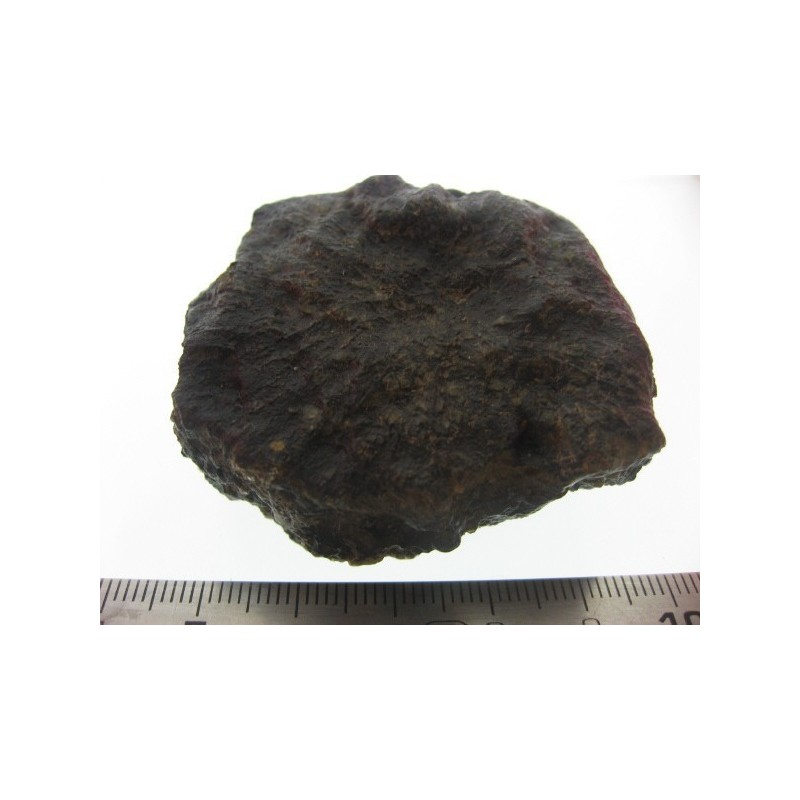 Oriented Martian Meteorite / 101.90g