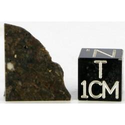 Shisr 166 / Lunar Meteorite