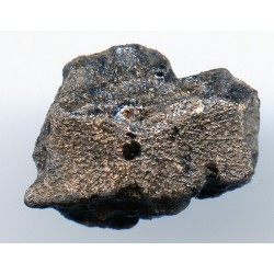 Tissint martian meteorite back