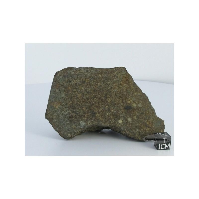 Chondrite L/LL4 / Sahara 97137 / Weight 308g