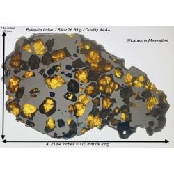 Pallasite Imilac 76.85 g
