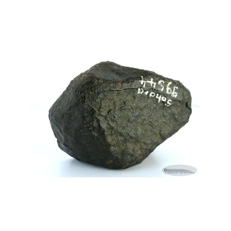 Carbonaceous Chondrite CO / Sahara 99544 Main Mass