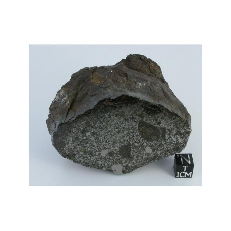 Vaca Muerta Meteorite / End cut 494.6g