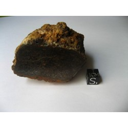 Dalgaranga meteorite / Mesosiderite / Large half individual 182.5g