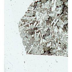Angrite / SAH99555 / Microprobe Polished Thin Section