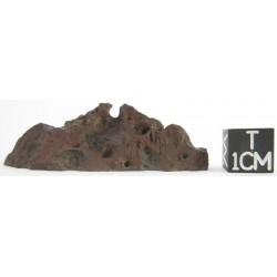 Minera Escondida (Name pending) / Bencubbinite 28.50g