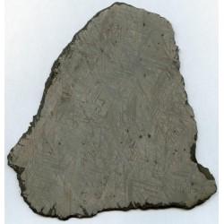 Muonionalusta Meteorite