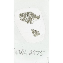Martian Meteorite Thin Section NWA 2975