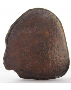 Oriented Meteorites For Sale