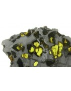 Pallasites for sale