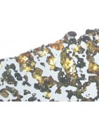 Pallasite from Chile found in 2018